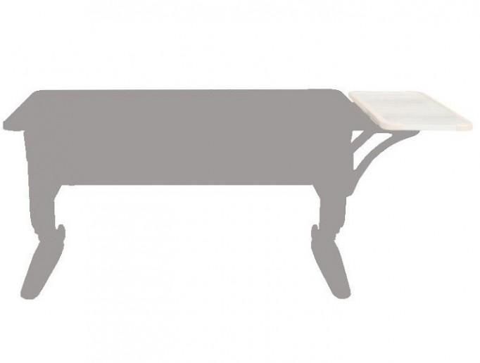 Полка боковая СУТ 39.290