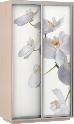 Шкаф-купе Хит Фото Орхидея
